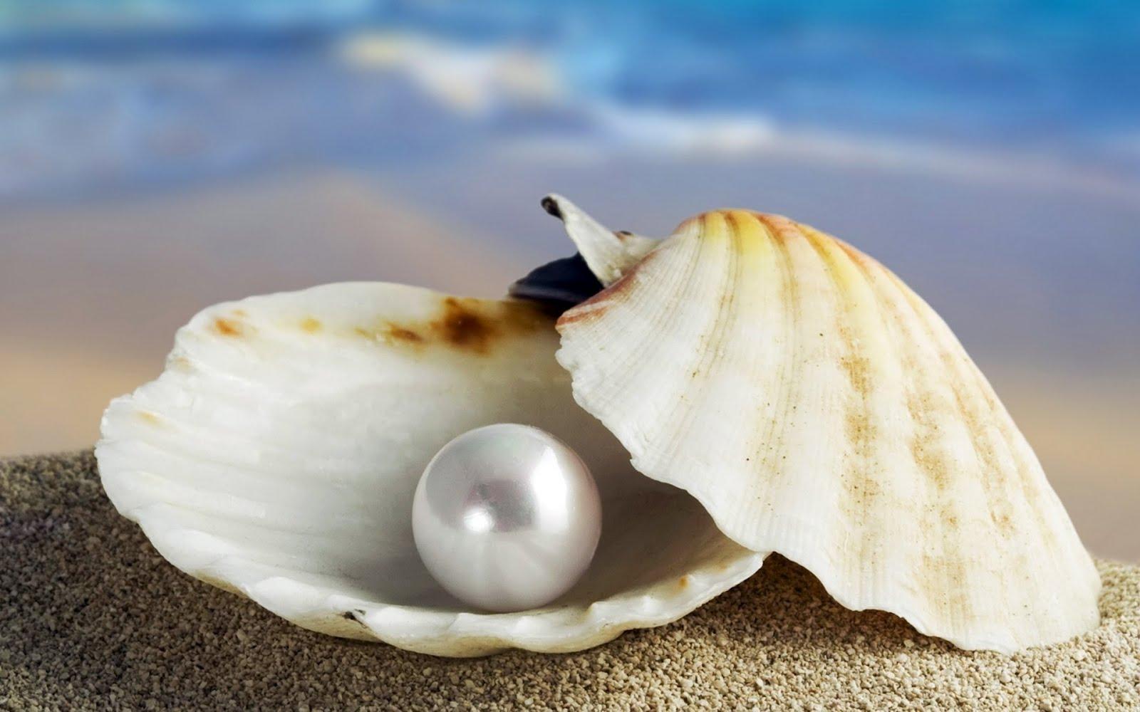 El Cuidado De Tus Perlas